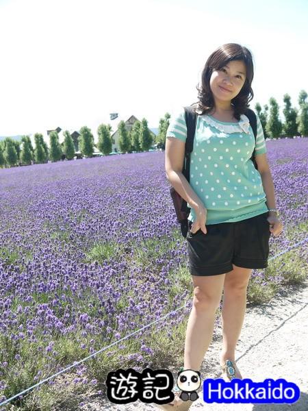 富良野FLOWER LAND花田57