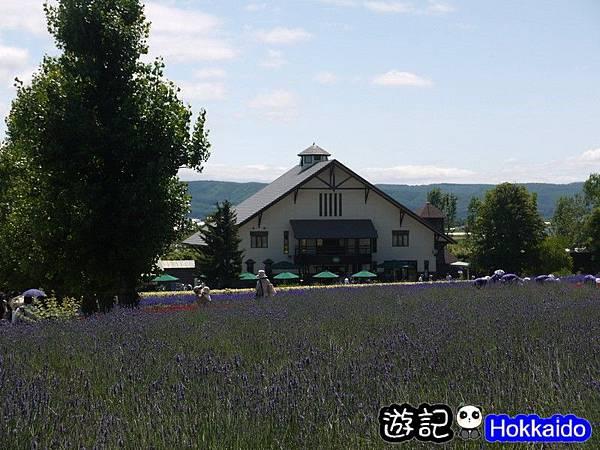 富良野FLOWER LAND花田61