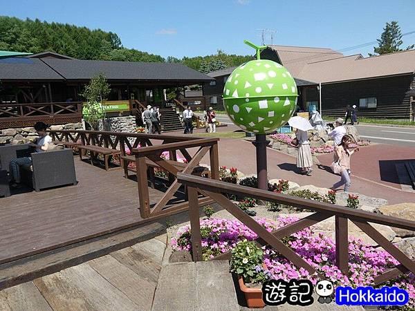 富良野FLOWER LAND花田67