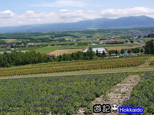 花田列車28