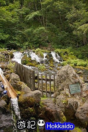 京極羊蹄湧水公園04