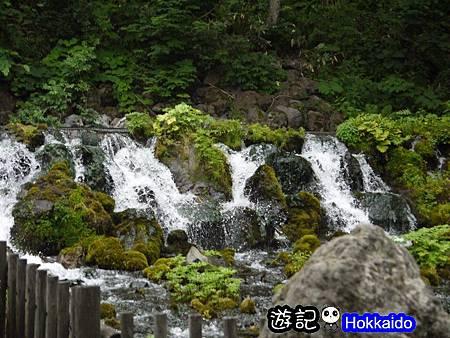 京極羊蹄湧水公園27