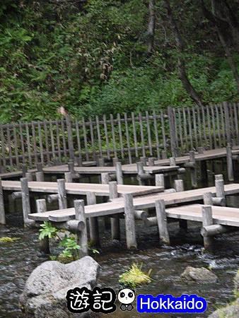 京極羊蹄湧水公園33