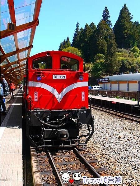 P1230880.jpg