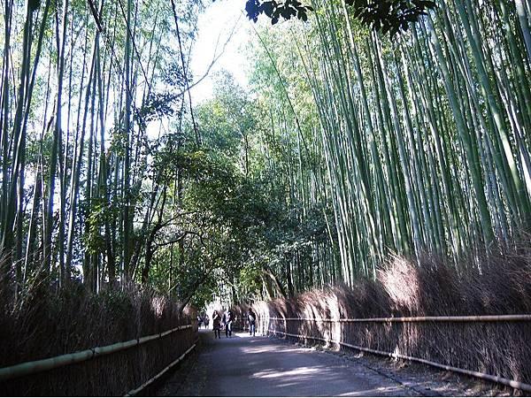 嵐山40.jpg
