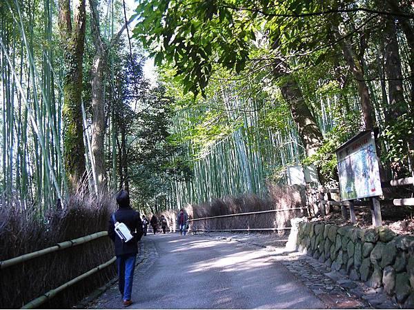 嵐山39.jpg