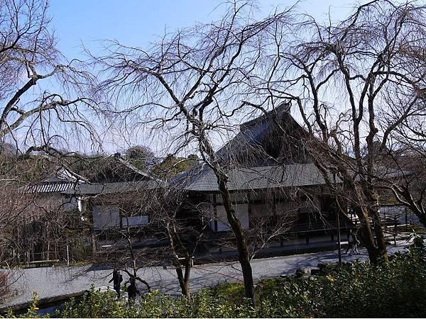 天龍寺62.jpg