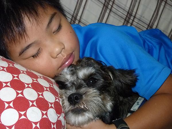 最愛跟哥哥睡覺