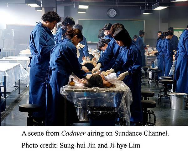 Cadaver, photo by Sung-hui Jin and Ji-hye Lim.jpg