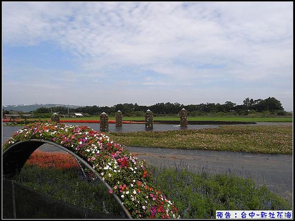 花海入口處.jpg