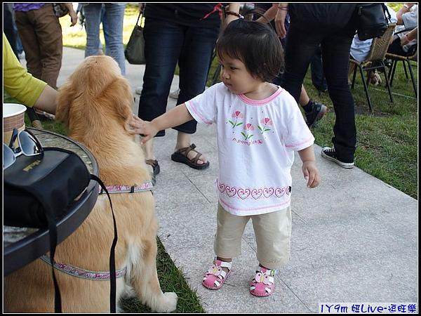 妞先對狗狗小心翼翼的摸摸.jpg