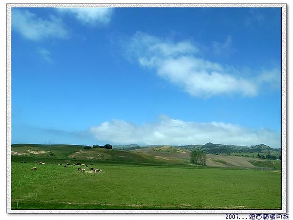 但尼丁-前往的路上風景,像不像windows的桌面.jpg