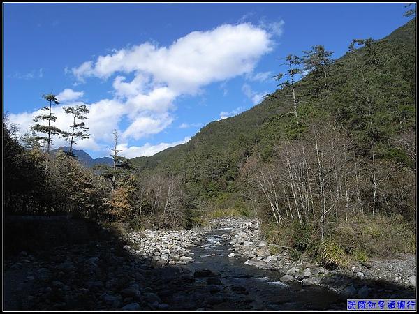 七家灣溪的潺潺水聲,乃國寶魚櫻花鉤吻鮭產地.jpg