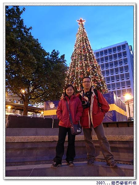 但尼丁-市議會前應景的聖誕樹.jpg