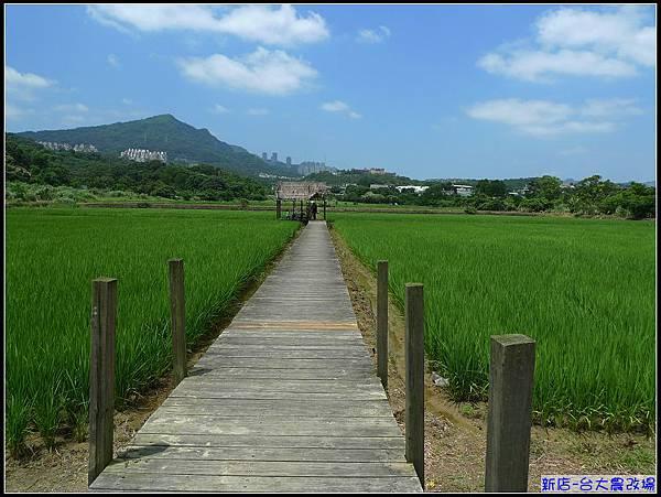 在稻田的中央的草寮內有乘涼聊天,感受愜意!.jpg