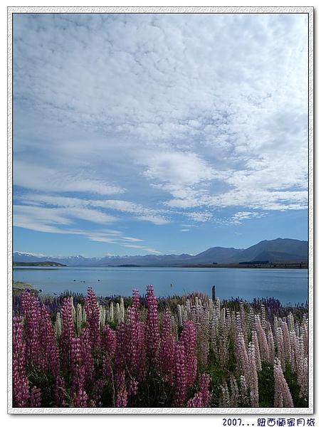 蒂卡波湖-即使是如此,相機還是不能休息.jpg
