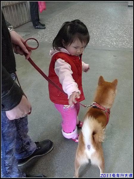只要看到狗狗就無控制的妞.jpg