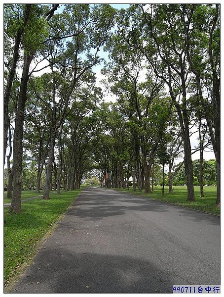 乾淨又舒服的步道.jpg