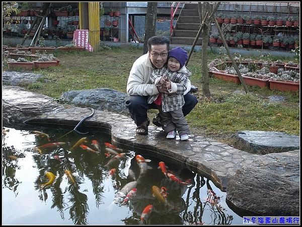 一早清晨7點...妞與妞爸開心的在看魚.jpg