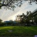 台北的天空今天有陽光.jpg