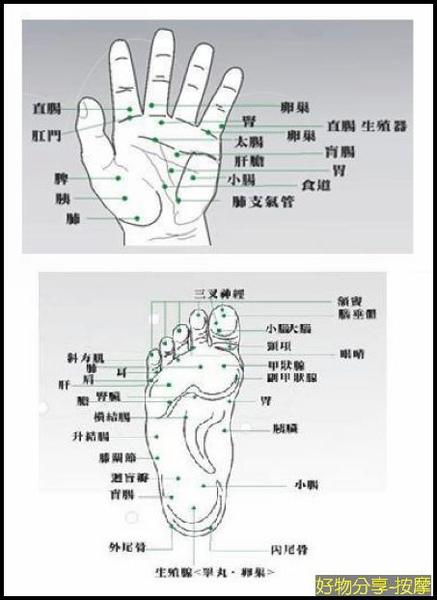 穴道圖.jpg