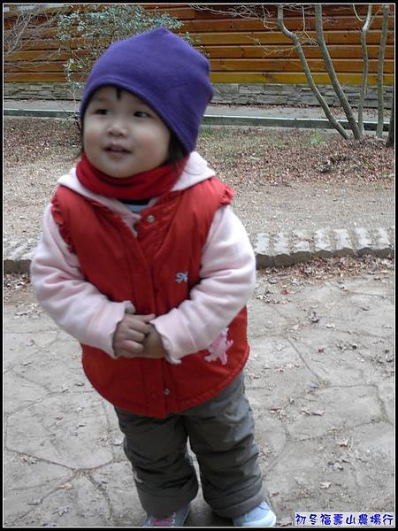 5度C的福壽山,讓妞身穿3件+背心+圍巾+毛帽.jpg