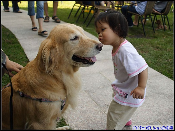 狗狗嚇到把頭轉到另一邊.jpg
