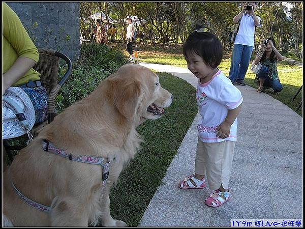 跟狗狗聊天中.jpg