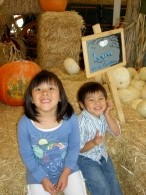 Pumpkin Patch 2008