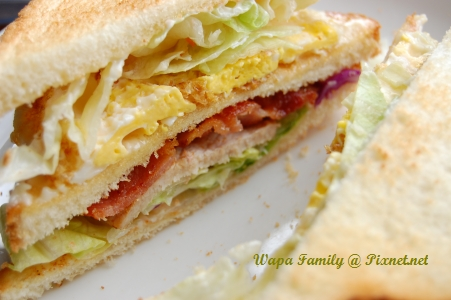 Sandwich 004.jpg