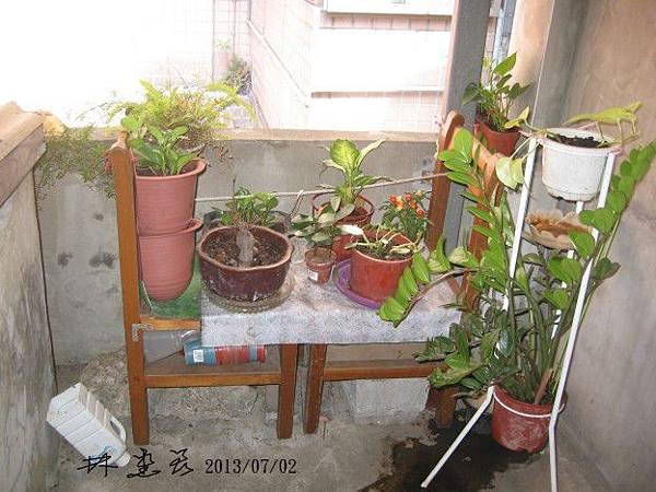 簷下低牆植栽請上座