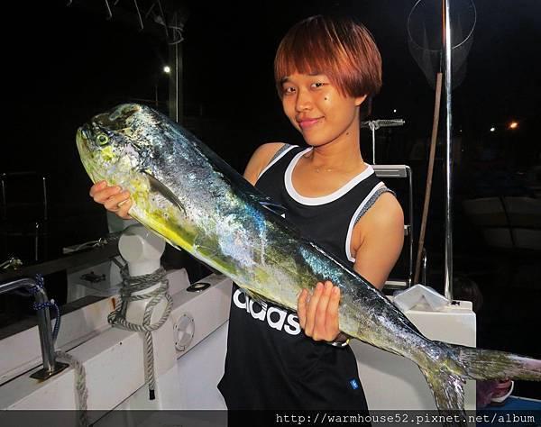 那天拖釣行程釣到鬼頭刀、鮪魚、鰹魚