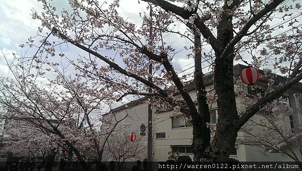 IMAG6769.jpg