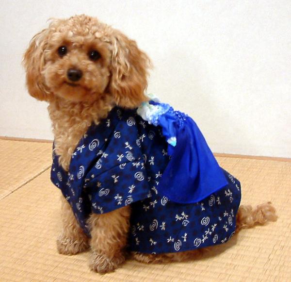 yukata_m6.jpg