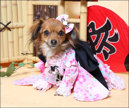 kimonodress.jpg