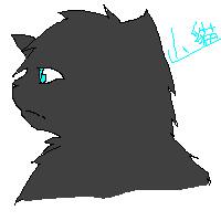 山貓-鴉羽.bmp