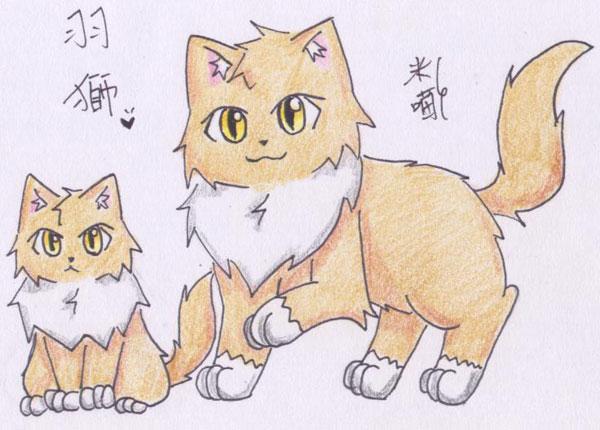 米喵-羽獅.jpg