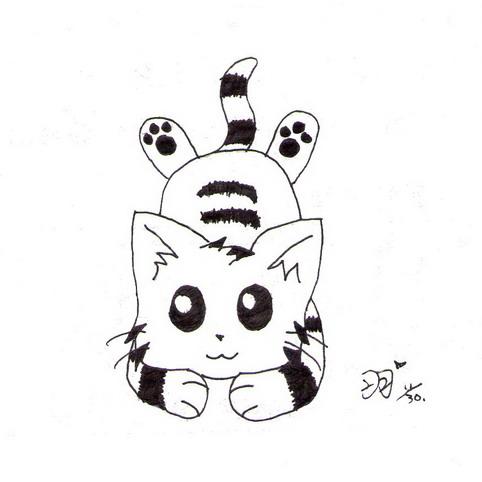 羽-小貓.jpg