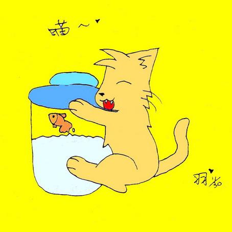羽-抱瓶貓.jpg