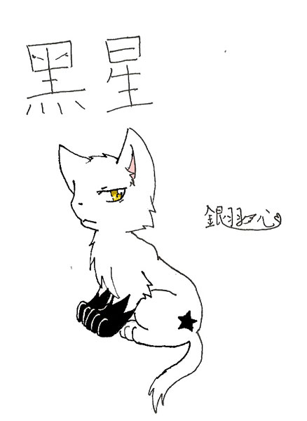 銀羽心-黑星.jpg