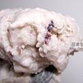 冰淇淋 2013-04-21 10.18.48