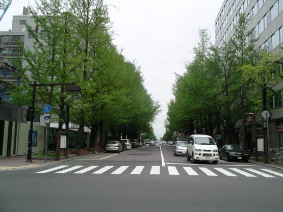 64_札幌街景