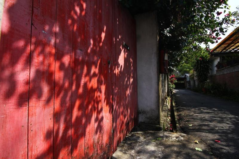 樟仔園的紅門花影07.jpg