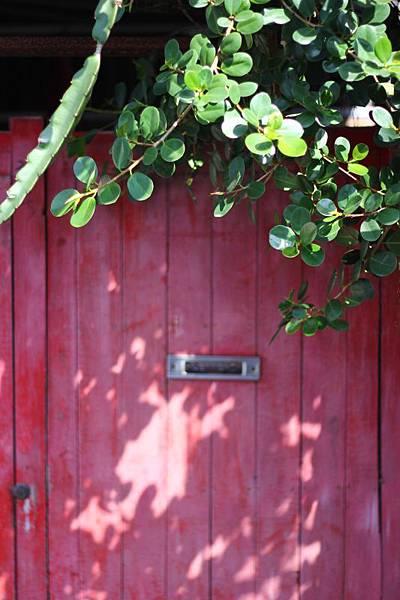 樟仔園的紅門花影11.jpg