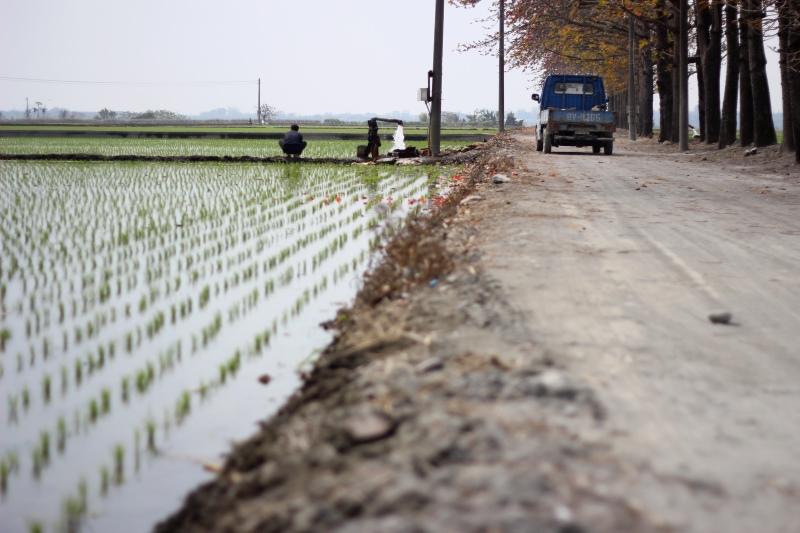 溪洲裡的木棉道08.jpg