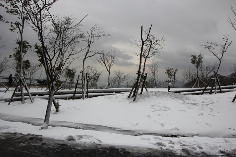 1月24日那場雪17.jpg