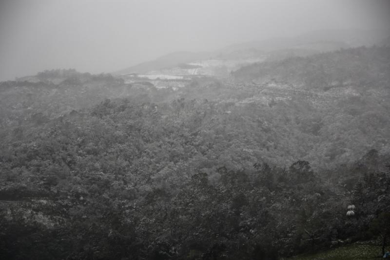 1月24日那場雪05.jpg