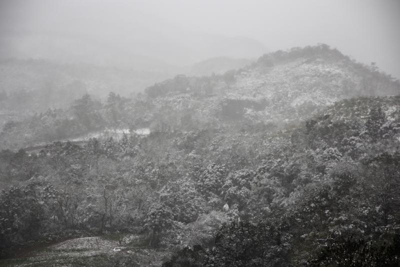 1月24日那場雪06.jpg