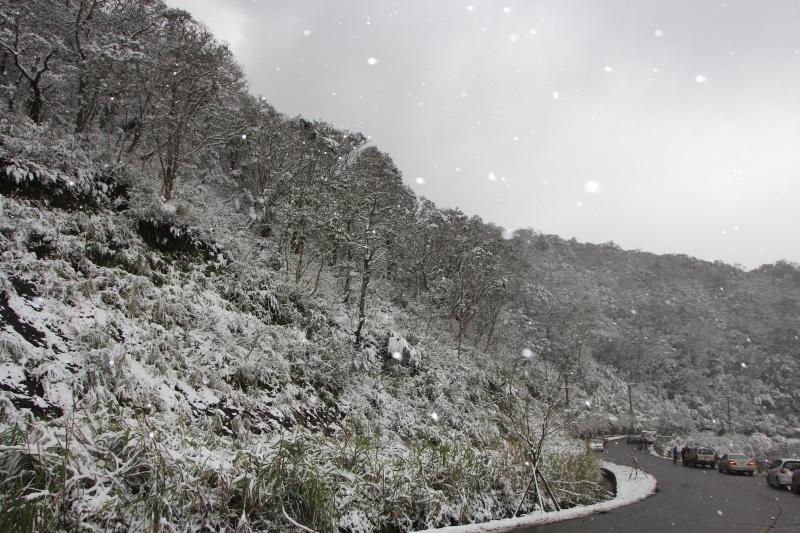 1月24日那場雪08.jpg