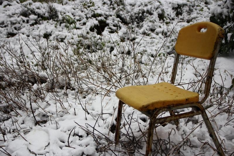 1月24日那場雪09.jpg